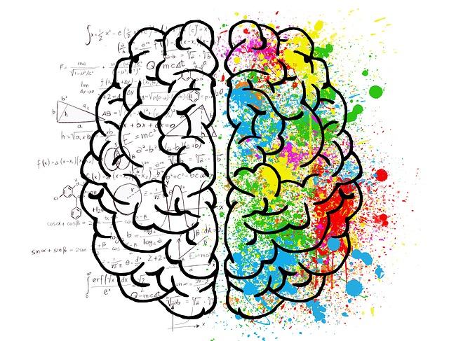 Czym się różni mózg kobiety od mózgu mężczyzny?